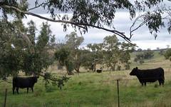 RMB 109 Springvale Rd, Nangus NSW