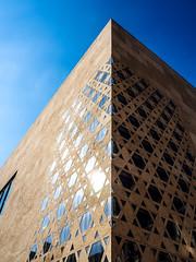 hell und dunkel (-BigM-) Tags: deutschland germany baden wrttemberg ulm donau stadt town city architektur architecture bigm fassade synagoge juden jdisch david stern