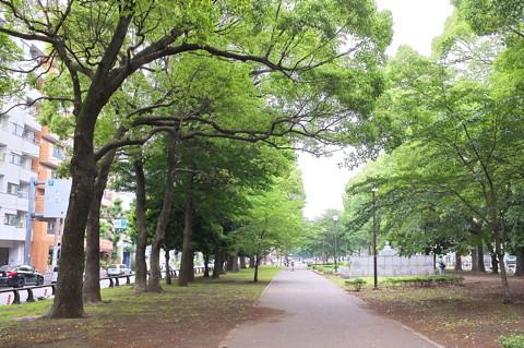 いきな下町横浜橋通商店街