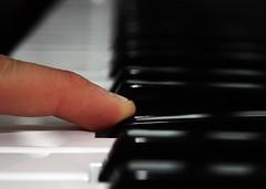 Day 56 (Tom Inglis) Tags: black tom project keys keyboard day thomas finger nail piano 365 56 andwhite inglis thomasy7