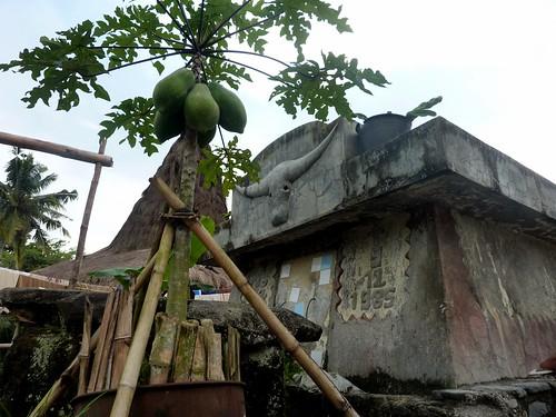 Sumba ouest-Waikabukak-Praiijing-village (11)