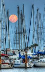 Rigging the Supermoon (John Osegovic) Tags: sunset sailboat stpetersburg moonrise supermoon
