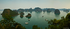 Halong Bay (davidkoiter) Tags: travel sea panorama reflection tree beach water canon landscape island eos evening bay boat high junk angle stitch pano wide vietnam reflect 7d vista l series karst f4 1740 halong 2012 f4l aspectratio koiter davidkoiter
