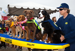 20120616_DogSurf_Loews2012_KillerImage_1031