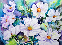 Cosmos, by Vnia (Dona Mincia) Tags: flower art nature watercolor painting paper natureza flor study cosmos branca aquarela whitecosmos