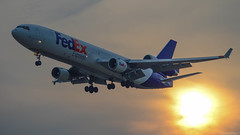 FedEx MD-11F Sunset Arrival (Aerodynamics92) Tags: sun southwest minnesota st wisconsin paul us airport aircraft aviation united country jet minneapolis continental delta an tyler landing 124 international airbus a380 express hastings boeing condor airways 707 airlines fedex 717 takeoff 777 federal rare 747 a330 757 airliner a340 767 737 a320 embraer 727 canadair a319 a321 crj700 emb 787 antonov erj a318 crj900 an124 crj200 erj145 797 e170 e190 erj135 an124100 a350 e175 crj100 e195 crj1000