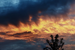 Fire in the sky (Pain Picture) Tags: sunset holland clouds boxmeer nikond600