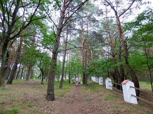 Inowłódz - Russian war cemetery, WWI (2)
