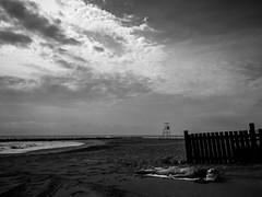 Flesh (Thru@lens) Tags: blackwhite monochrome bw bnw mono beach sea sky clouds sun cloudy noir landscape seascape water outdoor carlomarialanave