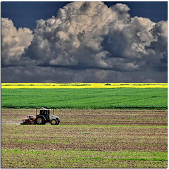 Working the land (Nespyxel) Tags: sky tractor field clouds landscape nuvole working cielo land campo plow terra plowing paesaggio trattore colza nespyxel stefanoscarselli rememberthatmomentlevel1 rememberthatmomentlevel2