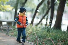 A Walk in the Wood (Shun Daddy) Tags: life family portrait hongkong prime star kid child pentax f14 sony snapshot 85mm fullframe alpha   ff a7 fa     2013  mirrorless