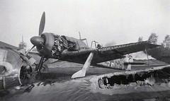 Fw-190F