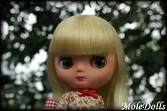 Middie Blythe Custom N.77 by MoleDolls