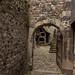 Honfleur-20110519_8616.jpg