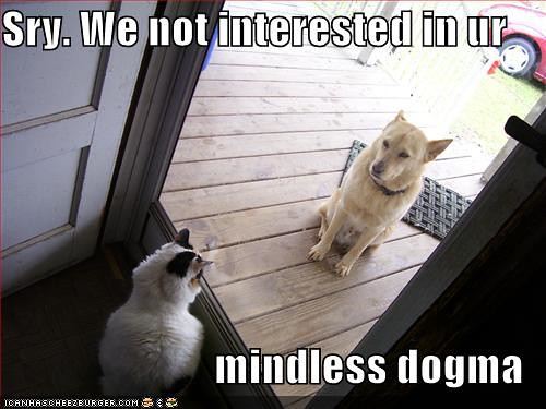 Atheist Cat Not Interested in Mindless Dogma