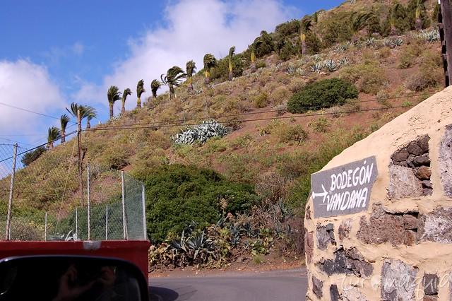 Bodegón Vandama - Gran Canaria
