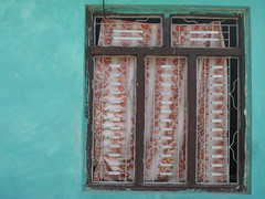 039 turquoise window (sarahkwallace) Tags: street blue nepal red brown white house flower green window paint pattern tea turquoise curtain grill frame material annapurnas