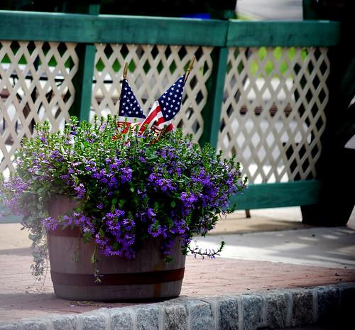 Flags 'n Flowers