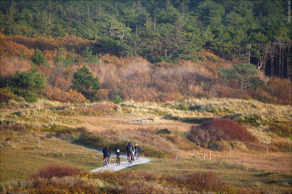 Bikers heading back to the forest (Vlieland)
