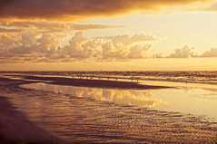 A Beach Bum Wannabee  That's Me! (pixelmama) Tags: ocean sea sun beach birds clouds sunrise reflections sand texas sandbar explore brighteyes padreisland padreislandnationalseashore likeparadise chasinglight gufofmexico takeninoctober pixelmama butiffeltlikesummer beachbumsong andthegulfwaterswarmlikeabathtub beachbumwannabee