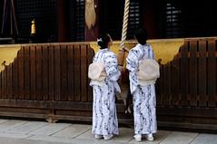 (Tamayura) Tags: japan nikon kyoto maiko geiko gion jul kansai d3 yasaka 2011 2470mmf28g osendo miyabikai 201107050946020