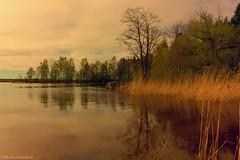 Enjoy the Silence (Maxim Slastnikov) Tags: park sky tree landscape colorful russia autofocus valday canonefs1855mmf3556is canoneos550d blinkagain bestofblinkwinners blinksuperstars