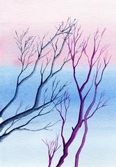 alberi 35
