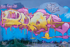 Mister Freeze Toulouse 2016 (Butterfly Art News) Tags: mister freeze toulouse 2016