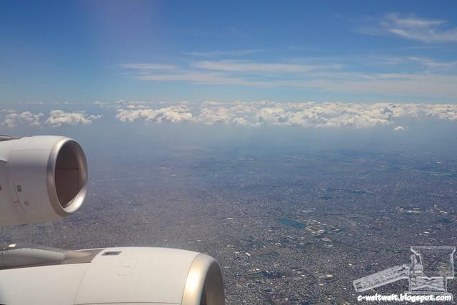 Flight (6)