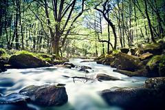 Golitha Long-1 (theloneman) Tags: nature forest canon landscape woods cornwall rapids rivers dreamy liskeard 2470mm28l golithafalls canon5dmkii leebigstopper hitechndgrad09