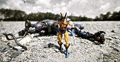 Scuffle (3rd-Rate Photography) Tags: canon toy book comic florida action wideangle xmen 7d figure jacksonville mutant marvellegends logan marvel 1022mm wolverine sentinel series10 toyphotography earlware 3rdratephotography