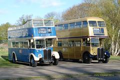 KXW123 Ex LT RT2494 AEC Regent III with Weymann RT8 body,  NXP997 1954 AEC Regent III with Weymann body ex London Transport RT4712 (Pete Edgeler) Tags: iii regent brooklands aec classicbus rt4712 rt2494