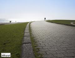 Green and Grey (der P(h)ottograph) Tags: deutschland norderney gras weg kurve fahrradfahrer