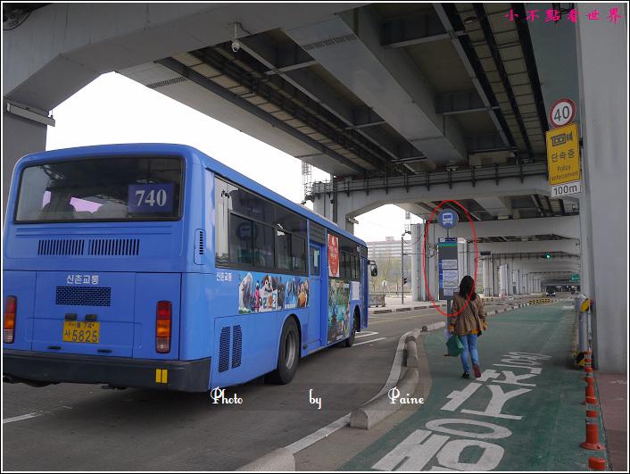漢江浮島 (10).JPG