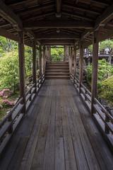 06062014-DSC029371328 (Zac Li Kao) Tags: green japan zeiss 35mm temple kyoto shrine asia sony cybershot nara rx1 rx1r