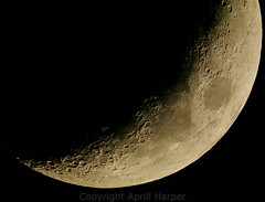"""Lunar Mosaic by Aprill Harper • <a style=""""font-size:0.8em;"""" href=""""http://www.flickr.com/photos/74627054@N08/14520231794/"""" target=""""_blank"""">View on Flickr</a>"""
