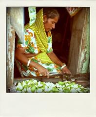 udaipur, 1 year ago (hanna.bi) Tags: trip woman india green fruit market udaipur rajahstan hannabi poladroid