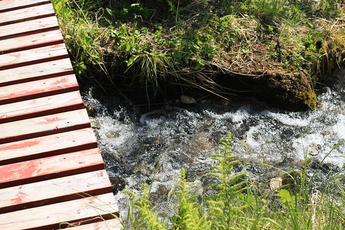 Bridge over running spring water