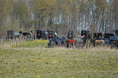 2012-04-22_Parked (Mark Burr) Tags: meetinghouse mennonite horseandbuggy brucecounty oldordermennonite huronkinloss