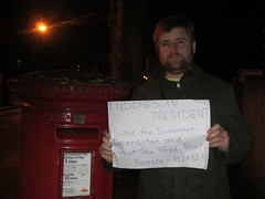 Todd William, London, UK (endoftheicons) Tags: sumatra orangutan deforestation palmoil tripa internationaldayofaction