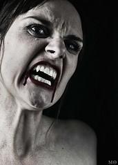 134/366 - The beast (Mnica Quintana) Tags: blood nikon vampire monica gata sang vampiro sangre vampir project365 nikond90 project366 gataestintolada monicaquintana