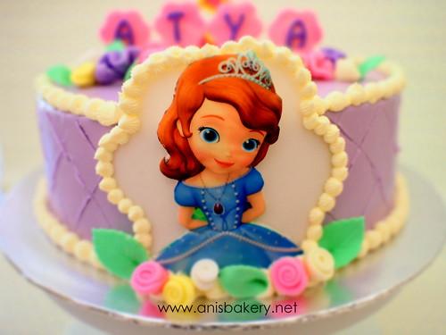Stupendous Sofia The First Birthday Cake A Photo On Flickriver Funny Birthday Cards Online Necthendildamsfinfo
