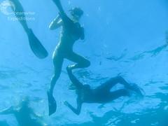 Oceanwise Expeditions 21-05-2014 011.jpg (Oceanwise Expeditions) Tags: ecology australia science research whales whaleshark biology ningaloo westernaustralia exmouth mantarays ningalooreef ecotours northwestcape oceanwiseexpeditions