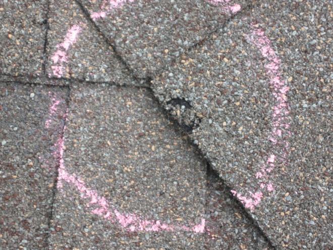 Austin Hail Damage