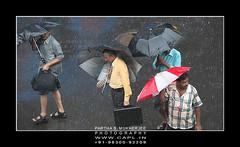 Monsoon - Attendance Compulsory!!! (PSM Photos) Tags: india news rain cloud
