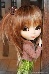 Nina - Pullip Nina (Kim-kun) Tags: dog brown green doll dolls pullip nina rebody obitsubody pullipnina barbiedress rewiged kimkun
