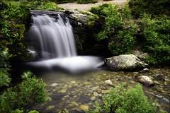 Silverfallet (johanbe) Tags: flower green fall nature water rock landscape waterfall nikon long exposure hiking le vatten stenar buskar d90 silverfallet lngexponering