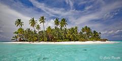 Maldives' Island (Colin Pacitti) Tags: island sea palm sky waves palmtree windswept windy bluesky cloud cloudy maldives coth sunrays5 coth5 ngc npc