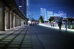Lines Color Temperature 2800 C (Blue HazeG) Tags: ohsanbashi night skyline city cityscape 50mm12 yokohama kanagawa japan canon6d canon blue