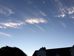 WTF - Chemtrails - Simultaneously dispersing in opposite directions (firehouse.ie) Tags: skies sky obscuring hazing climatecontrol control engineering geo manipulation manipulating weather weathermanipulation populationcontrol sinister nwo haarp geoengineering neoparticles spraying spreading spray chemtrails chemtrail wtf